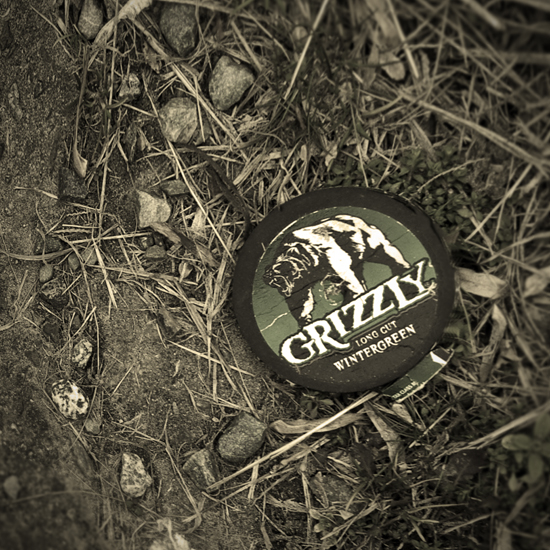 Grizzly 550x550