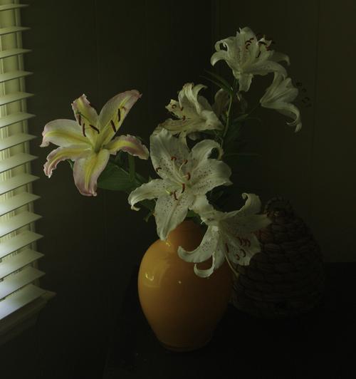 Flowers in Vase 500x535